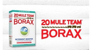 Trying New Products: Giveaway: 20 Mule Team Borax