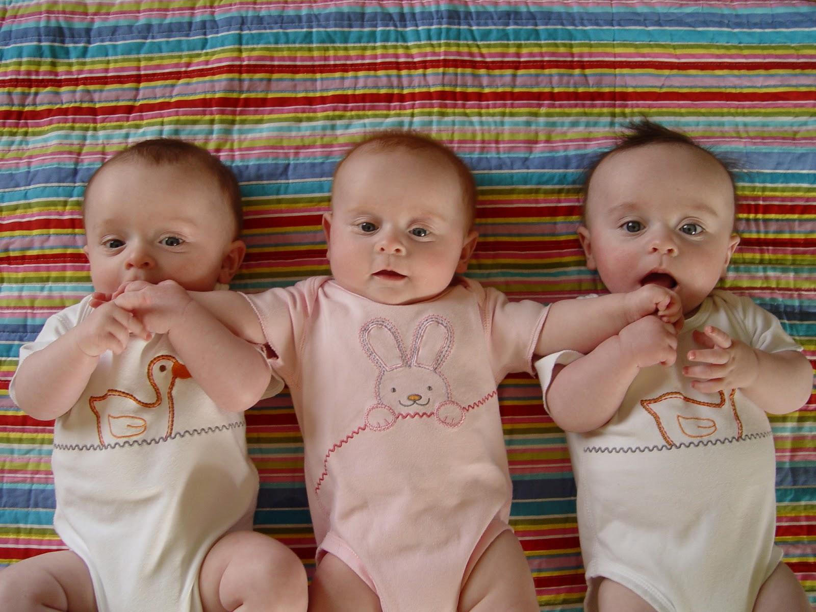 Lucu Banget Gambar Foto Bayi Bayi Kembar Tiga Foto Gambar Terbaru