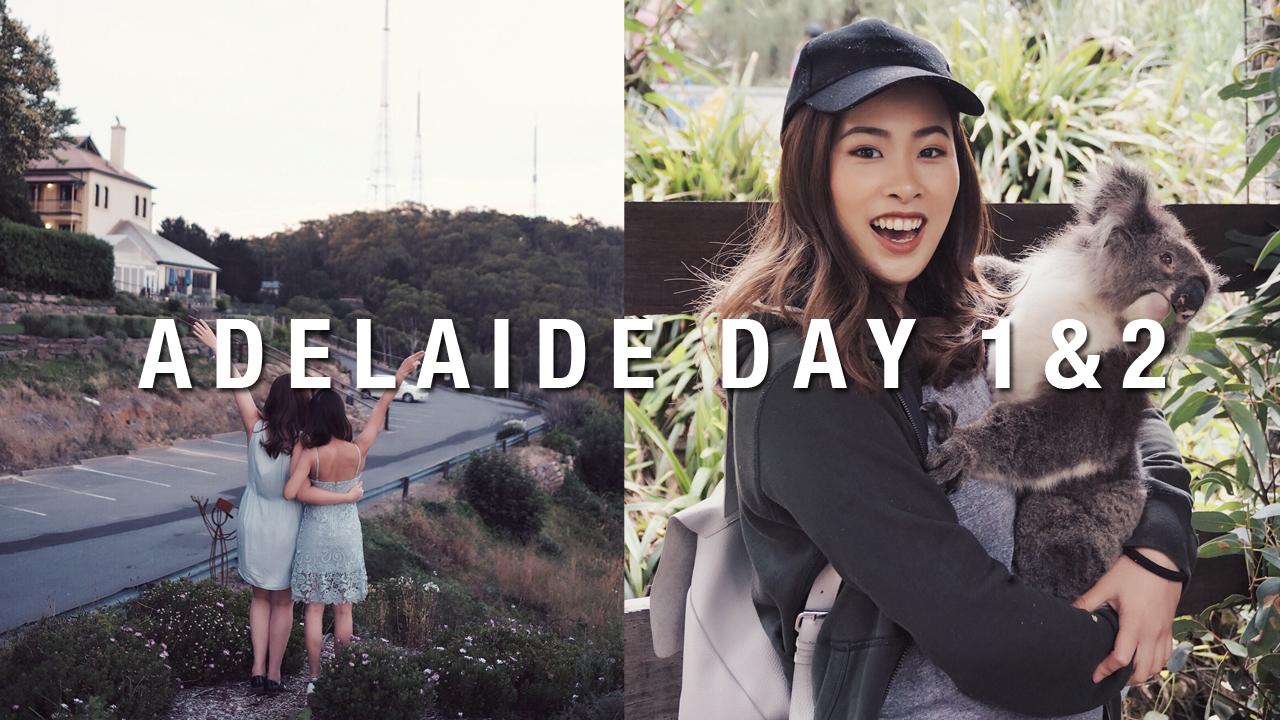 Koala Hugging in Adelaide (Day 1&2 Adelaide Vlog) | Eeked