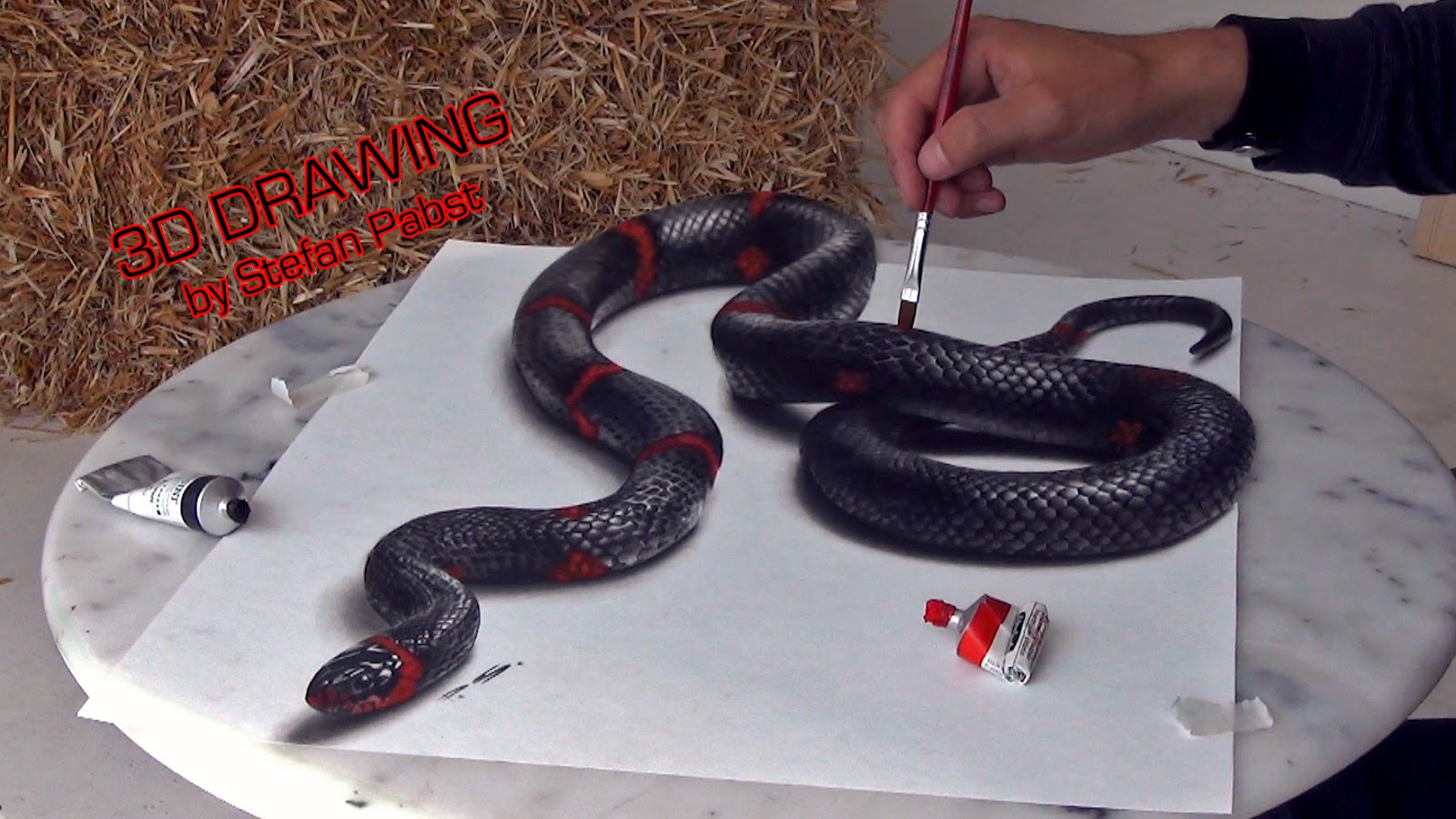 09-Snake-Stefan-Pabst-3D-Optical-Illusions-Drawings-and-Paintings-www-designstack-co