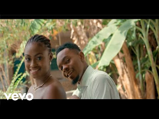 Hale Hale Video by Patoranking
