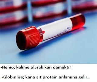 HGB (Hemoglobin)