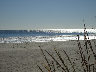 Why Visit North Myrtle Beach?