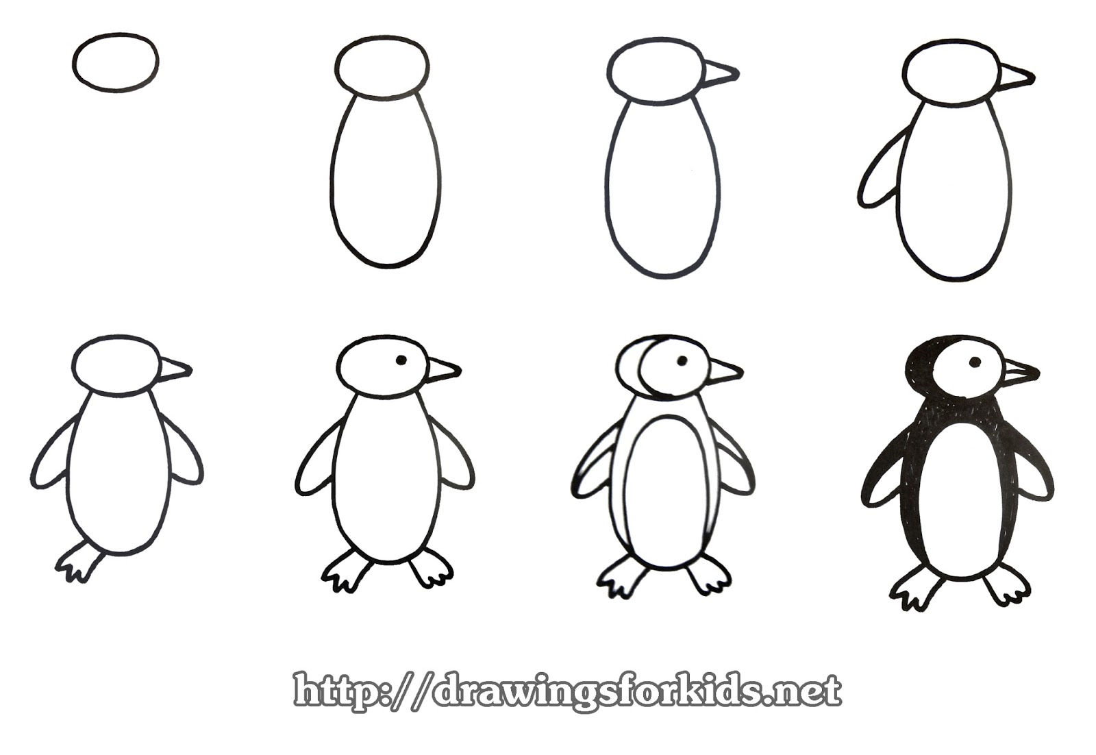 How to draw a Penguins for kids - drawingsforkids.net
