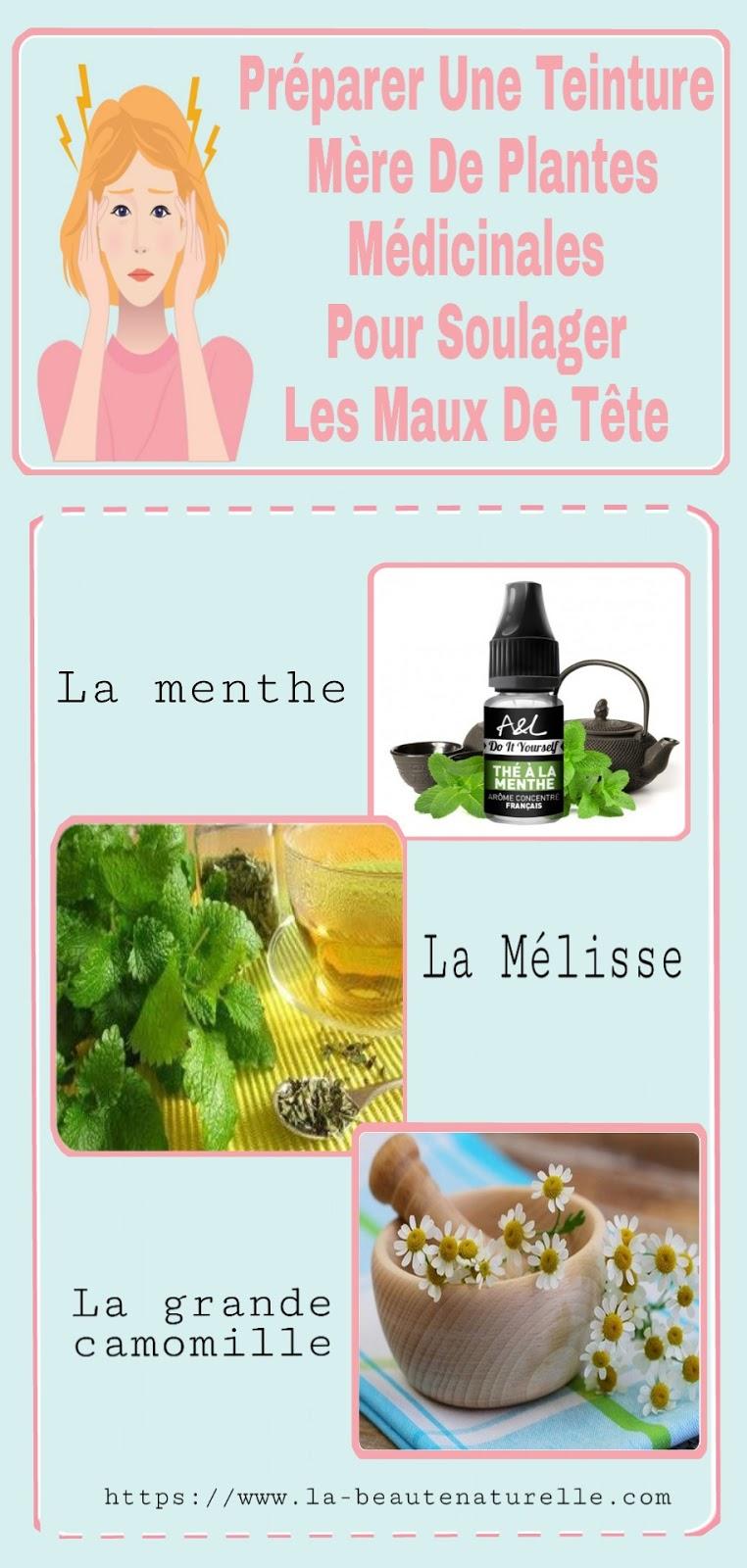 Préparer Une Teinture Mère De Plantes Médicinales Pour Soulager Les Maux De Tête