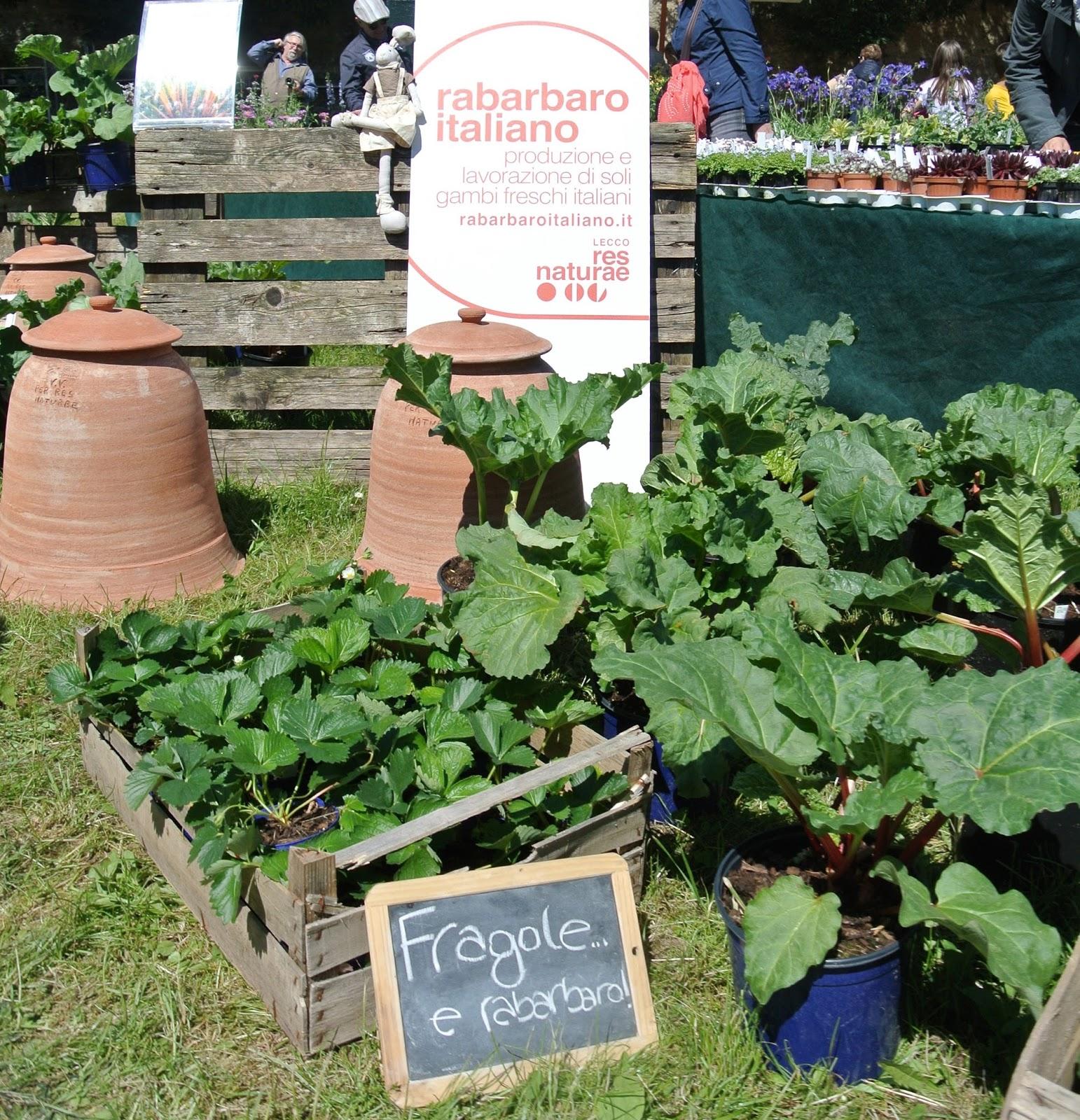 soluzioni ombra giardino tre giorni per il giardino gli allestimenti dei vivaisti