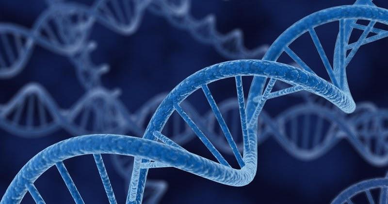 To make choosing embryo easier - Pre-implantation genetic
