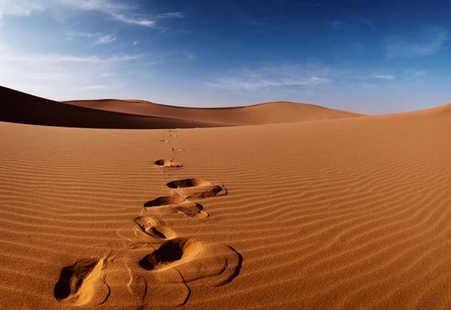 Bản lĩnh của 12 chòm sao khi 'lạc trôi' giữa sa mạc
