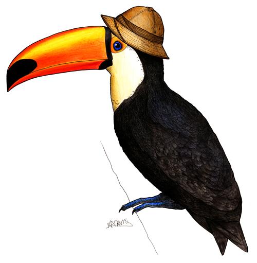 http://birdsinhats.blogspot.nl/