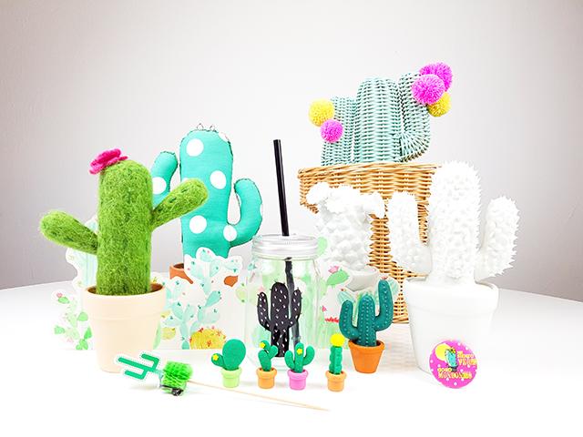 colección privada cactus rite menor jeje