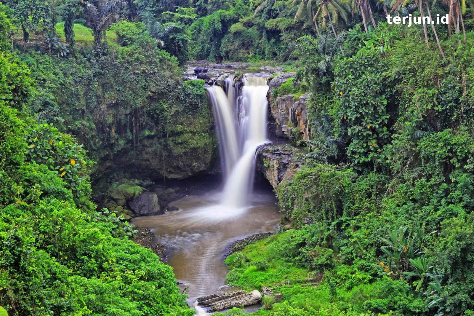 Air Terjun Indonesia: Wisata Air Terjun di Bali | Air Terjun ...