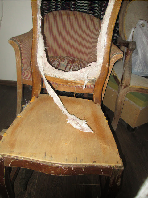 IMG 0035 - כסא נסיכה-קפיטונז'