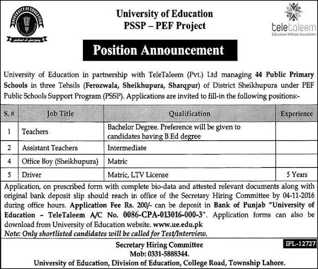 Teachers Jobs in Pakistan PSSP-PEF Project Public Primary School Jobs