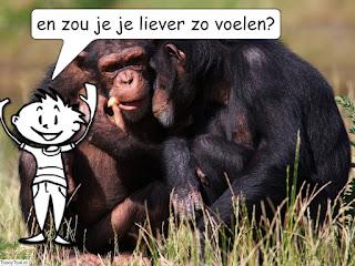 mindful aapje