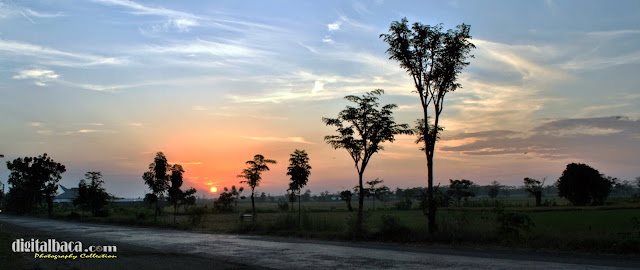Sunset Berlatar Sawah on Pasuruan
