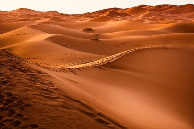 Gurun Pasir Terluas Di Dunia