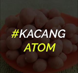 Resep Kacang Atom Telur Enak Dan Gurih