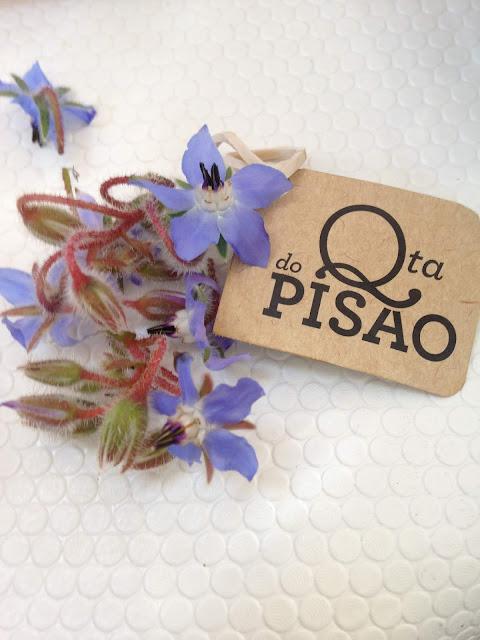 Festa dos Maios na Quinta do Pisão