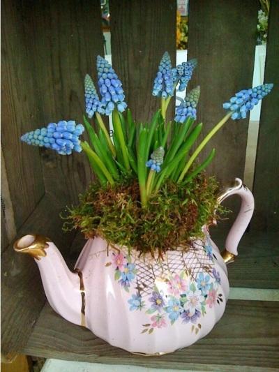 Kebun dalam Ketel: Ide Menggunakan Teko Sebagai Pot dan Vas Bunga