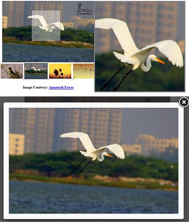 Image Zoom using jQuery Elevate Zoom Plugin | ProgrammingFree