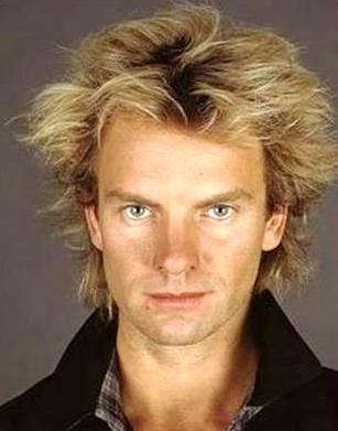 Foto de Sting con el cabello desgreñado