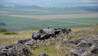 Makam Megalitik Usia 4.000 Tahun ditemukan di Galilea, Israel