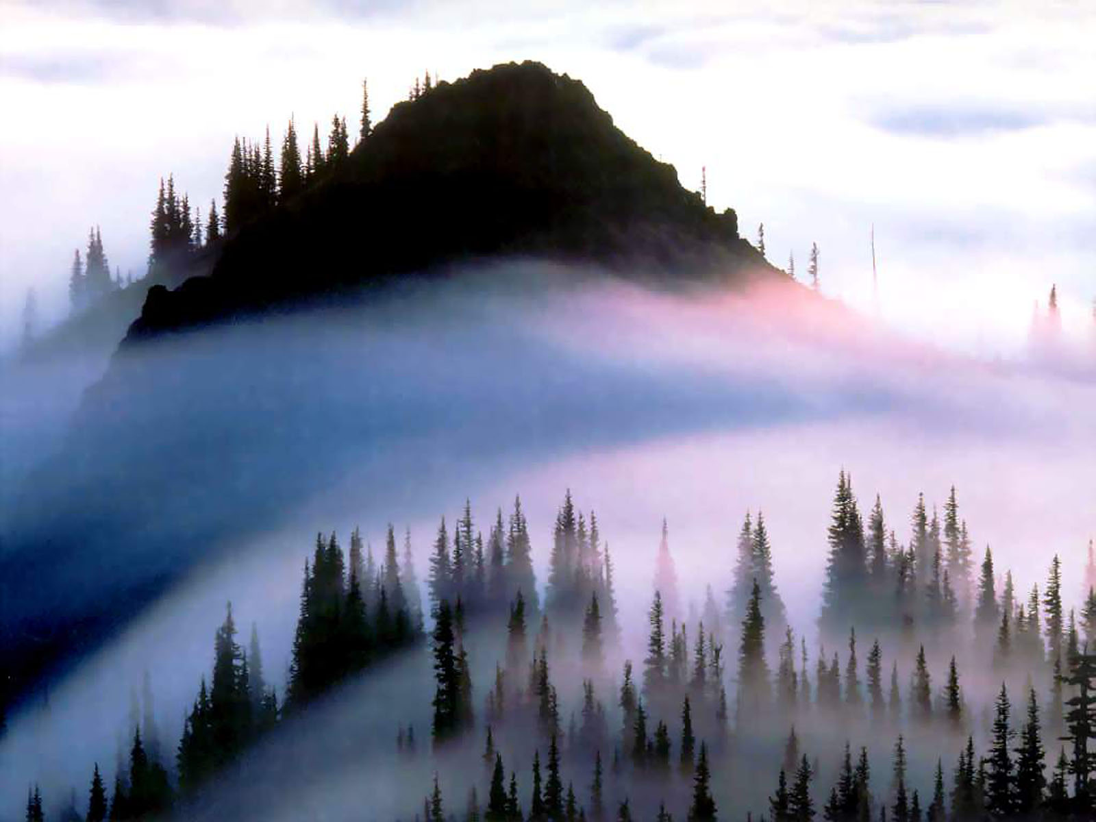 Olympic National Park Wallpapers Hd Car Wallpapers