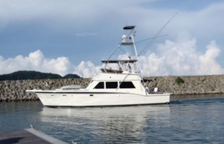 Fishing charters san diego sport spear fishing adventures for San diego sport fishing charters
