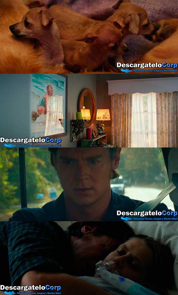 En Nombre del Amor HD 720p Latino