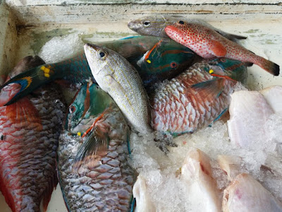 fish market saint johns