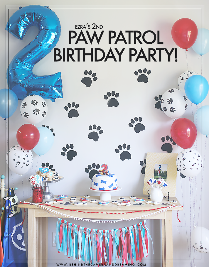 Ezras Paw Patrol 2nd Birthday Party
