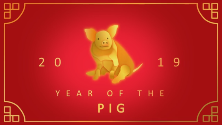 pig, year of the pig, career
