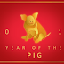 Year of the Pig 2019: Career Forecast