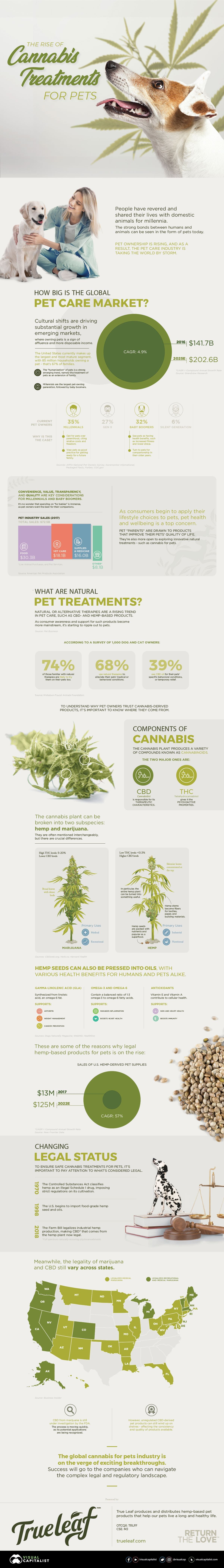 The Rise of Cannabis Treatments for Pets #infographic