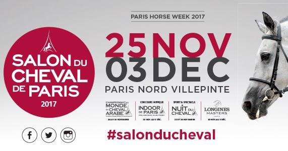 Bienvenue sur le blog des boutiques top les promotions for Salon industrie paris 2017