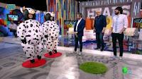 Zapeando Vacas