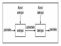 purcode.net