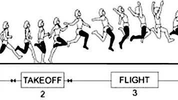 Macam Macam Gaya Lompat Jauh Gambar Dan Penjelasannya Penjasorkes