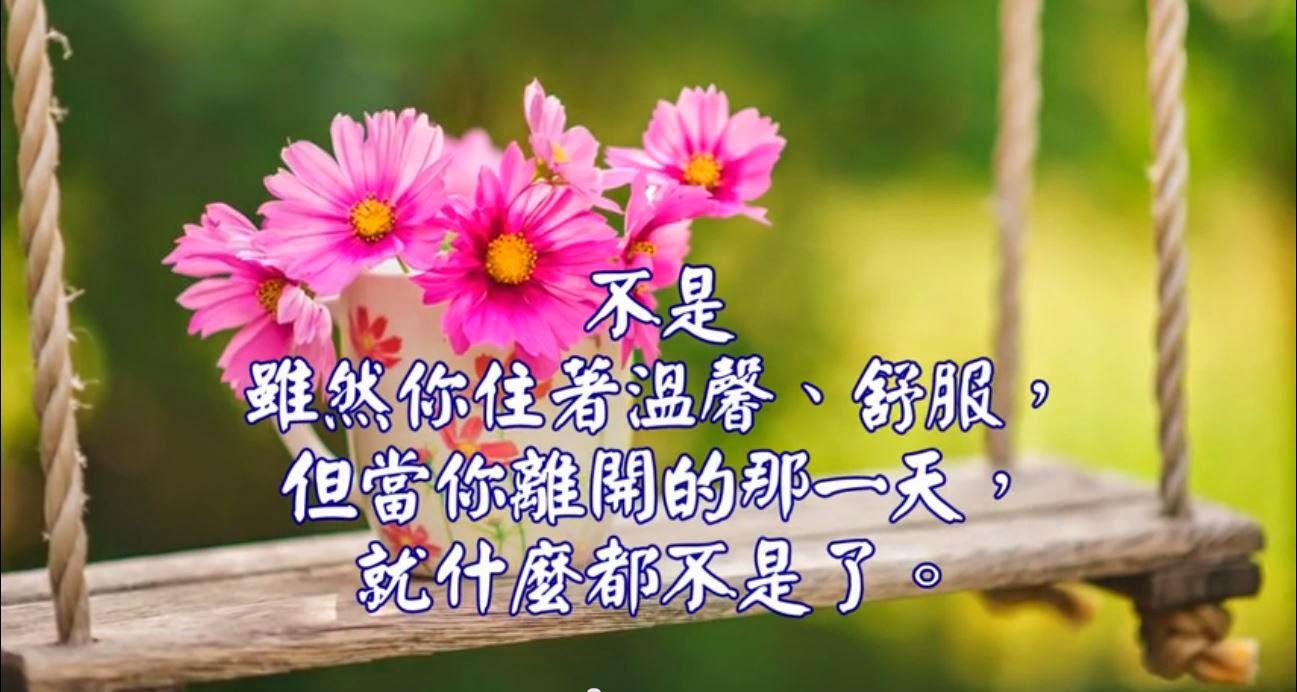 MYY 鳴耀揚洋: 心靈舒果-什麼是你的?