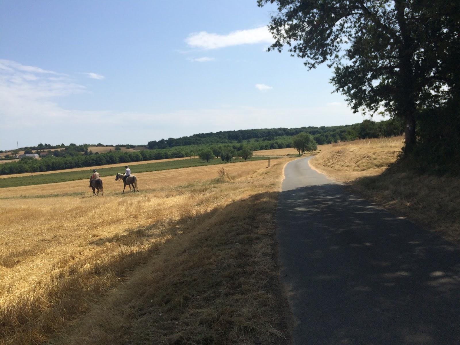 trasa rowerowa nad Loarą, droga do opactwa w Fontevraud
