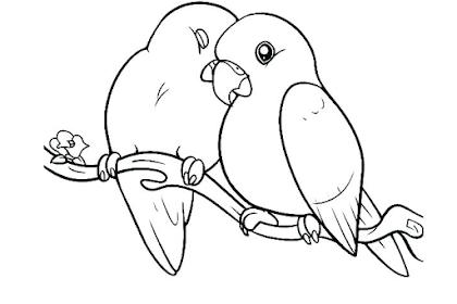 Gambar Kartun Burung Lovebird Gambar Kartun