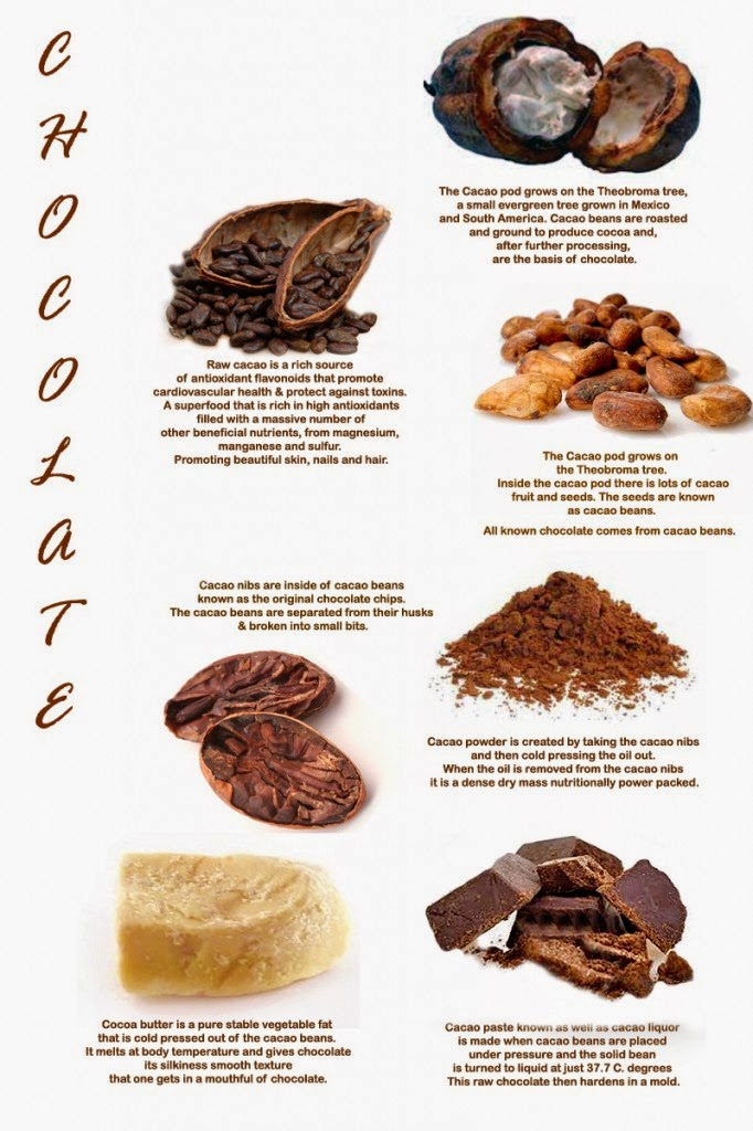 How To Make Raw Chocolate With Cacao Butter