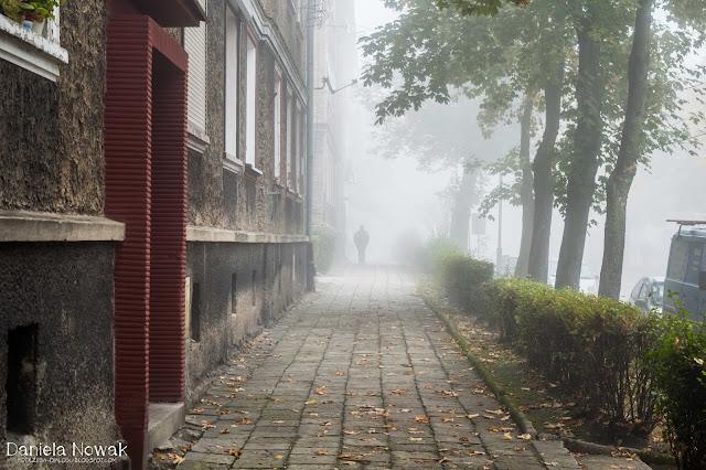 niech cię mgła prowadzi..