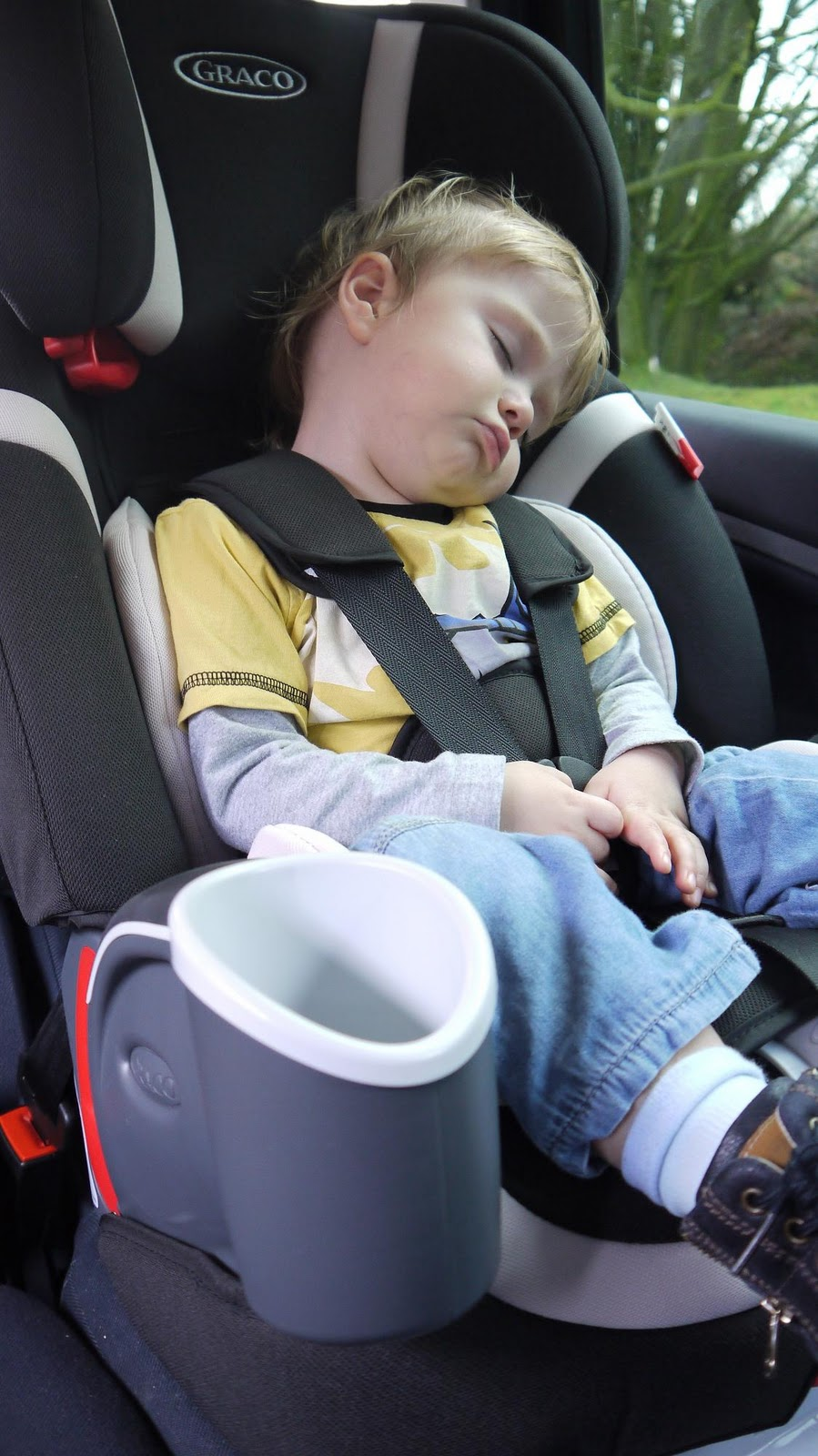 The Seat Is A Good Size And Freddy Seems Comfy In Padded It Quite High Giving Him View Out Of Car Window Which He Enjoys