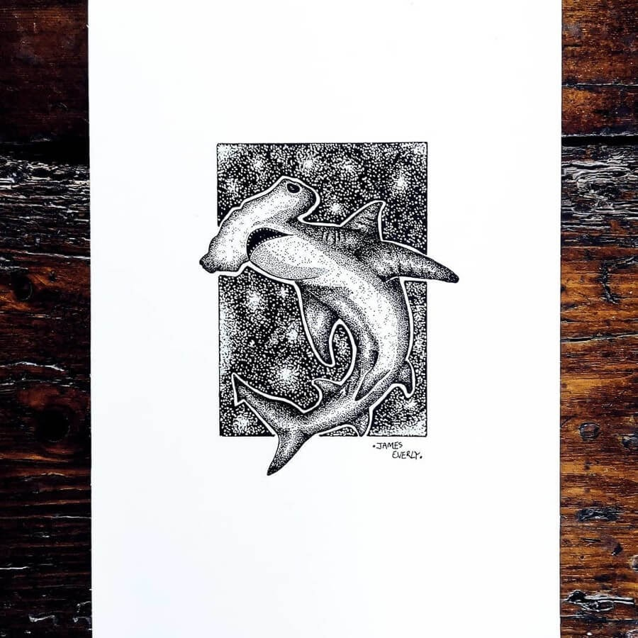 09-Hammerhead-Shark-Everly-Drawings-www-designstack-co
