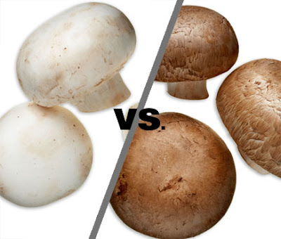 Phd thesis on button mushroom
