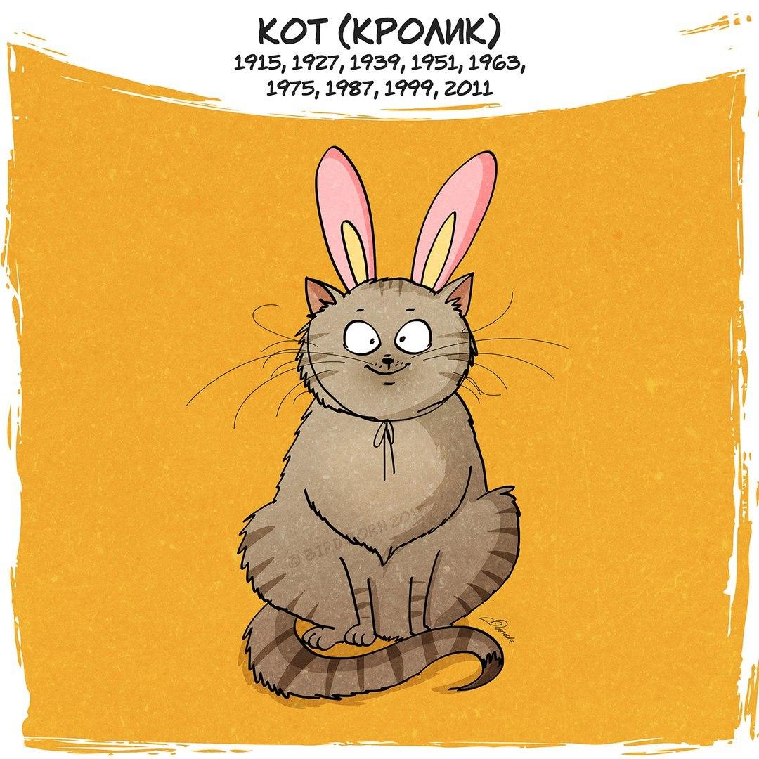Открытки кроликом котом