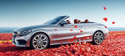 Mercedes Benz Cabriolets & Roadsters
