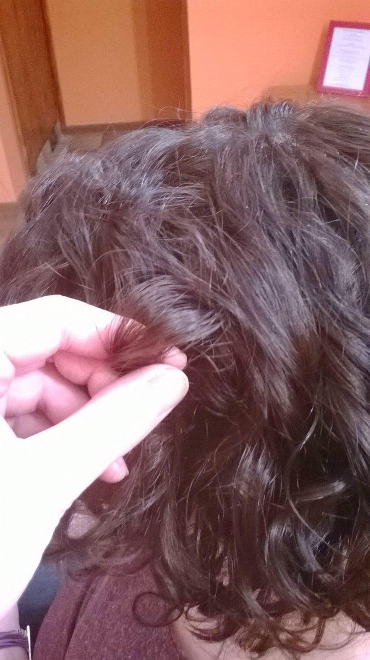 Wasze włosy u Mysi. Wyczesane loki