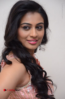 Actress Neha Hinge Stills in Pink Long Dress at Srivalli Teaser Launch  0032.JPG